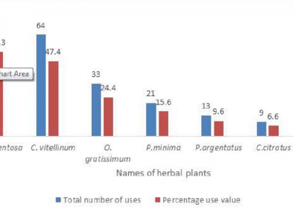 Graph showing percentage use value for the most mentioned herbal medicines