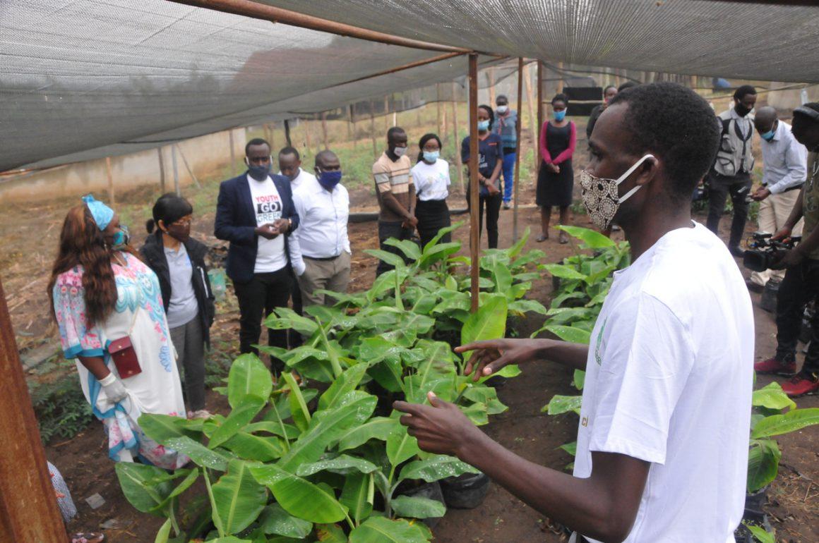 Agribusiness Incubation Hub (AIH)